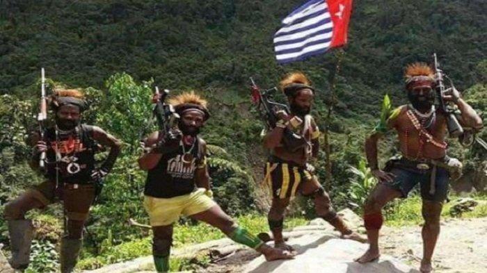 MUI: Mujahid Papua Dibantai Teroris KKB