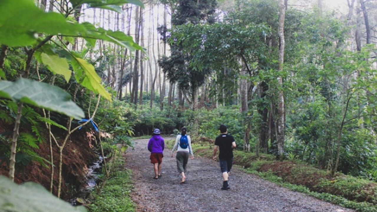 Pangling Dengan Gunung Puntang dan Taman Bougenville-nya