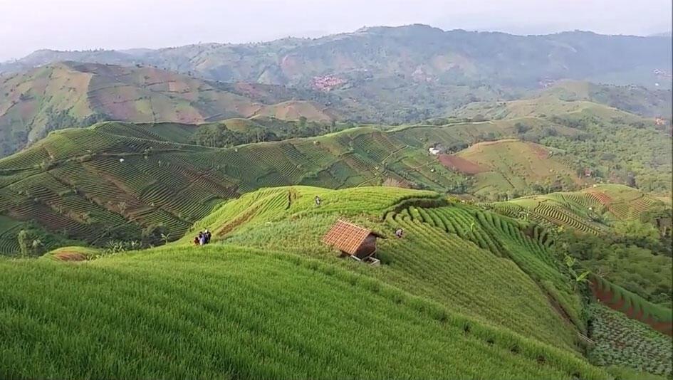 Bukti Betapa Seksinya Bukit Panyaweuyan di Majalengka