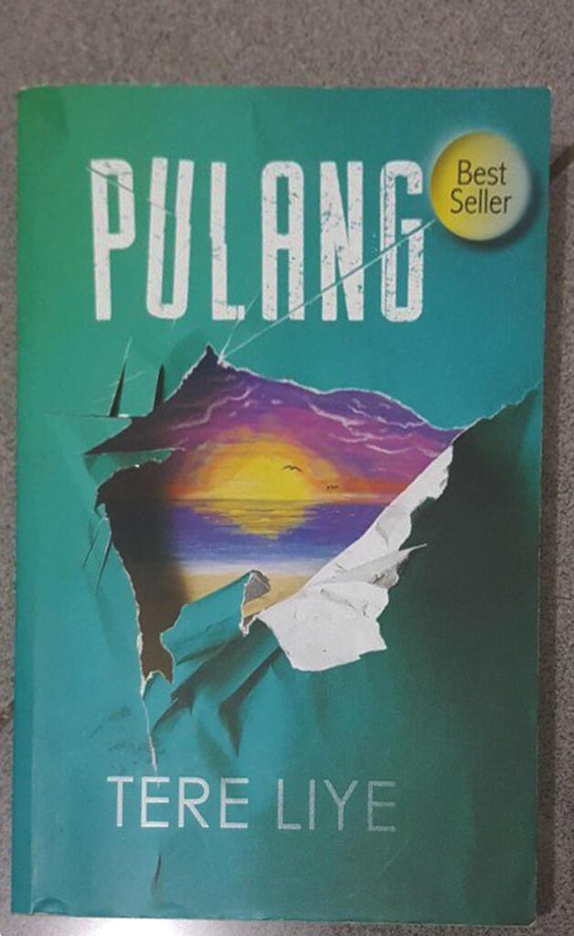 [Novel Review] Pulang by Tere Liye