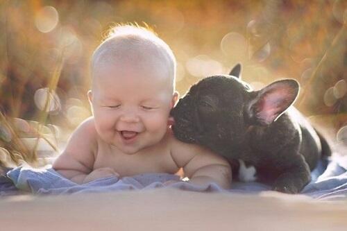 Bayi Bermain dengan Hewan? Berisiko atau Bermanfaat Gan?