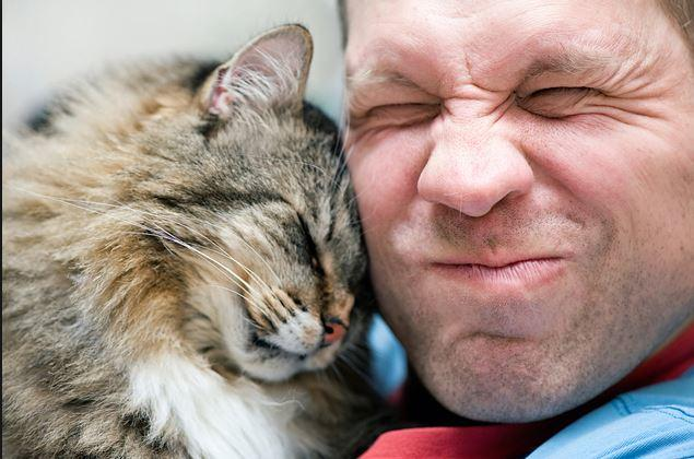 Ternyata Ini Alasan Kenapa Kucing Suka Banget Nempel-nempelin Kepalanya di Kaki Agan