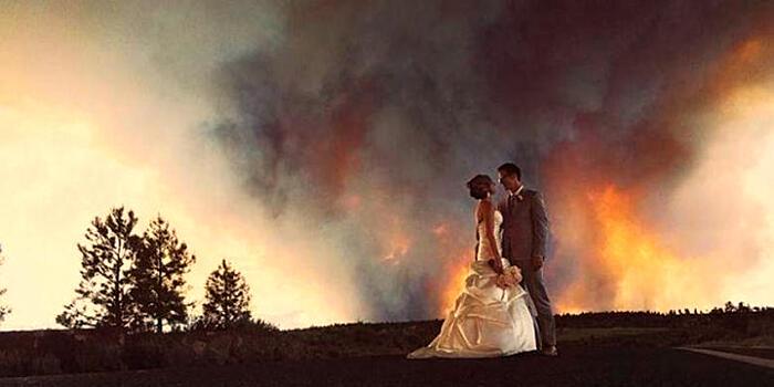 Pesta Pernikahan Dengan Tamu Tak Teduga