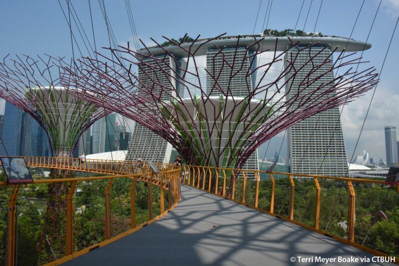 Fakta Bandara Changi Singapura dan Sederet Fasilitasnya - Saatnya Impian Jadi Nyata