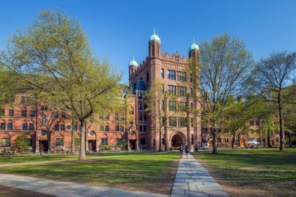 10 Ranking Universitas Terbaik 2019 di Amerika Serikat, Wajib Tahu!
