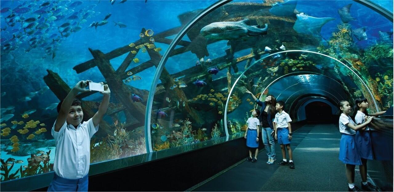 Saatnya Impian Jadi Nyata: 5 Destinasi Wisata Baru di Singapura