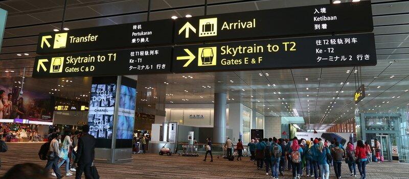 Saatnya Impian Jadi Nyata: Selain Canggih, Changi Airport Juga Punya Koleksi Unik Loh