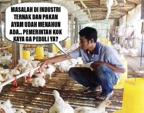 Mencari Keseimbangan Harga Ayam