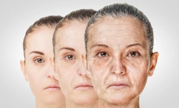 6 Manfaat Tak Terduga Daun Pepaya untuk Kecantikan, Bikin Awet Muda!