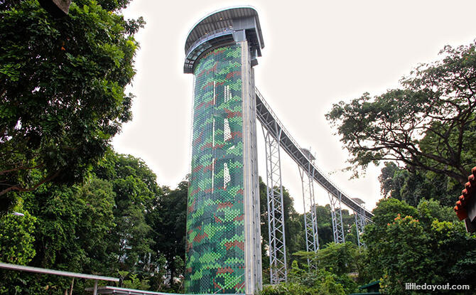 6 Jembatan Terkeren di Singapura - Saatnya Impian Jadi Nyata