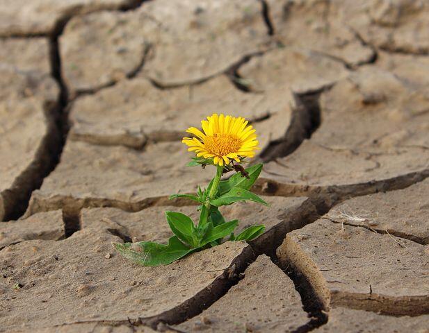 Kupertahankan Kejadulanku Sebagai Pembeda Abadiku