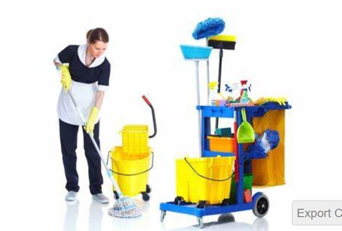 Cleaning service job