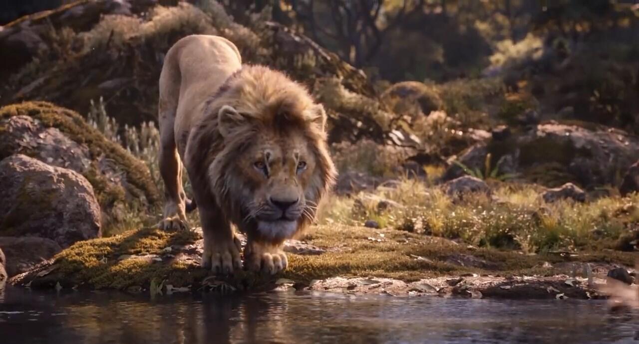 Detik per Detik Trailer Terbaru Live Action 'Lion King', Simbanya Gemesh!