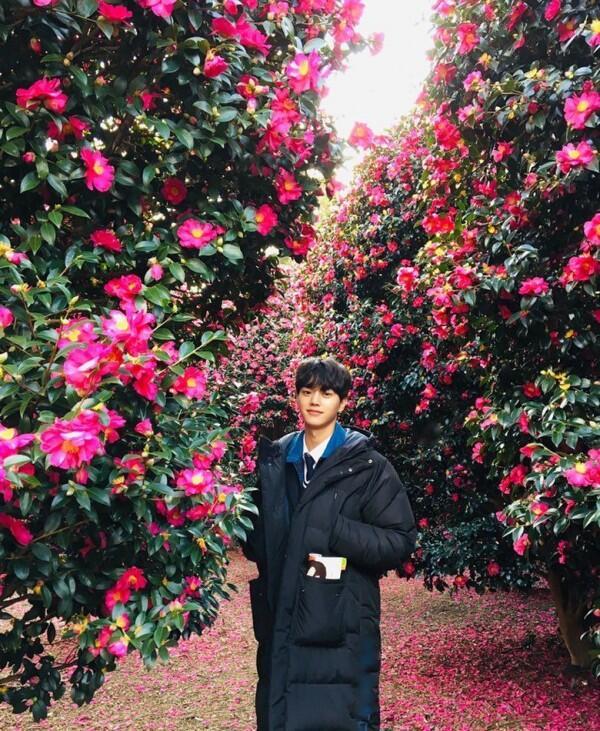Curi Fokus di Variety Show 'Michuri', Ini 10 Potret Memesona Song Kang
