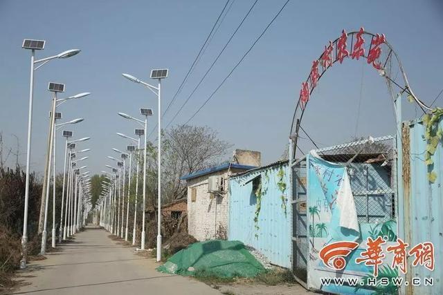 Ada 1000 Lampu Jalan di Sepanjang 3 KM Jalanan Desa Ini Gan!