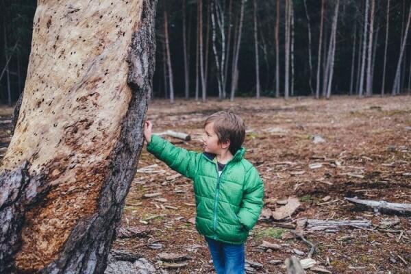 6 Pelajaran yang Bisa Kita Ambil dari Tingkah Laku Anak Kecil