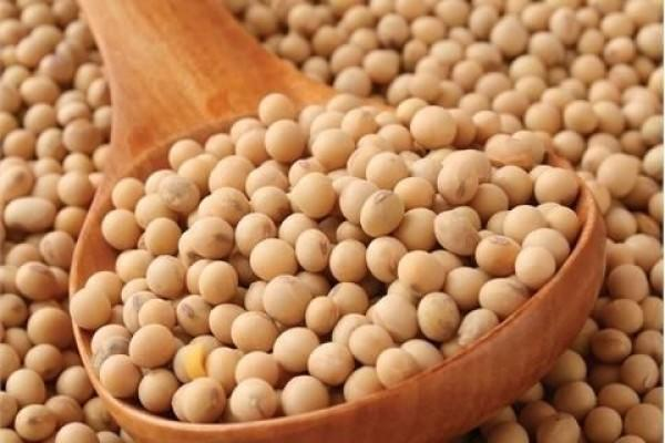 Sering Kamu Temui, 6 Makanan Ini Ternyata Hasil Rekayasa Genetika