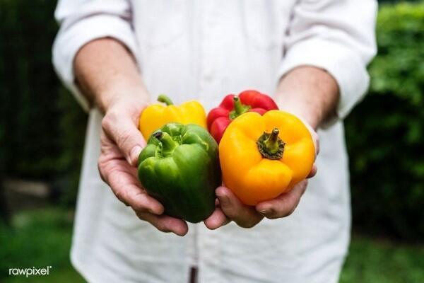 Terungkap, Inilah 7 Manfaat Ajaib Paprika untuk Tubuh Kita