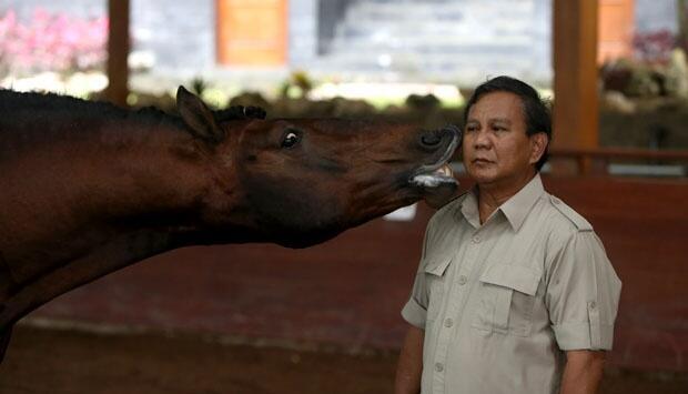 Prabowo Subianto Dikabarkan Akan Naik Kuda ke TPS