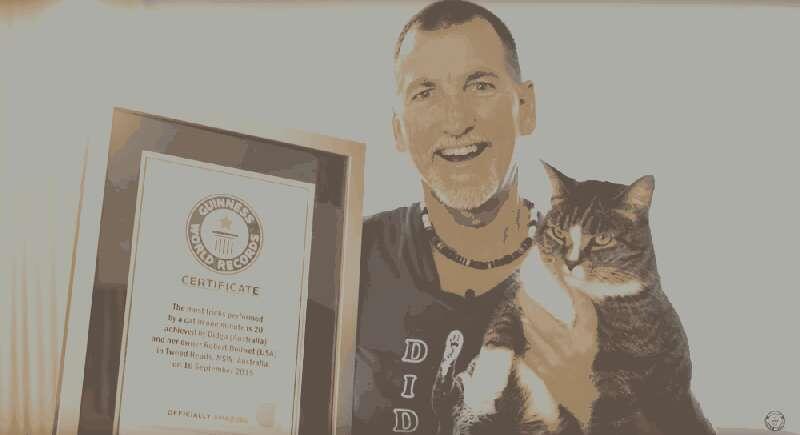 Kucing Paling Bertalenta Di Dunia: Didga & Boomer!