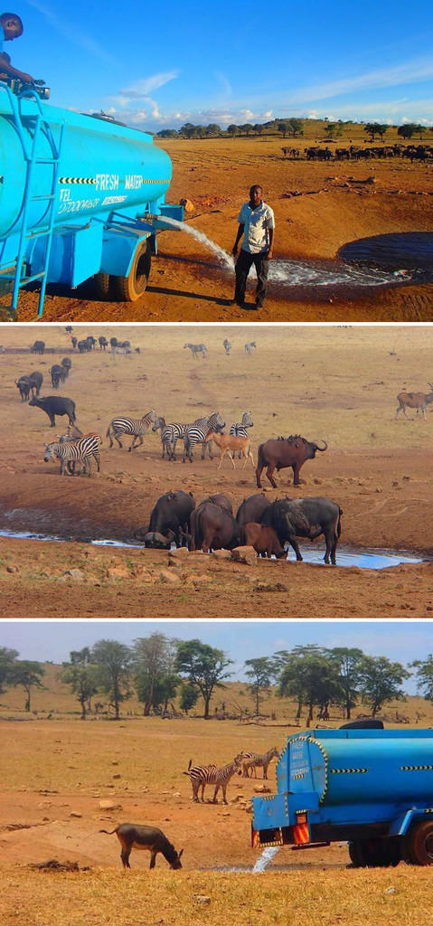 Kisah-Kisah Kemanusiaan Di Balik Sebuah Foto