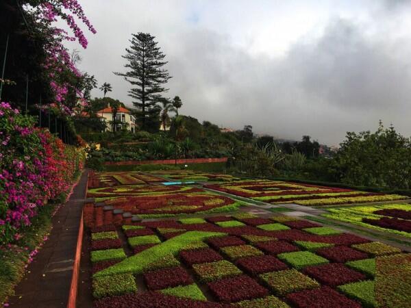 6 Tempat Wisata Alam di Pulau Madeira, Portugal yang Eksotis