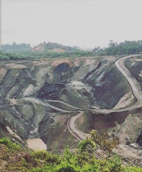 Kemungkinan Dampak Lingkungan Bila Bukit Soeharto Jadi Ibu Kota