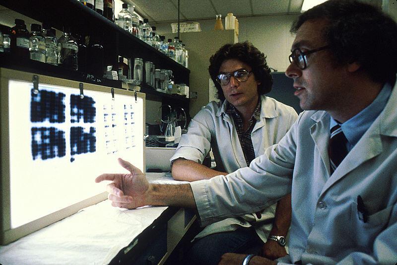Antibodi Monoklonal , Senjata Modern Dalam Mengobati Kanker