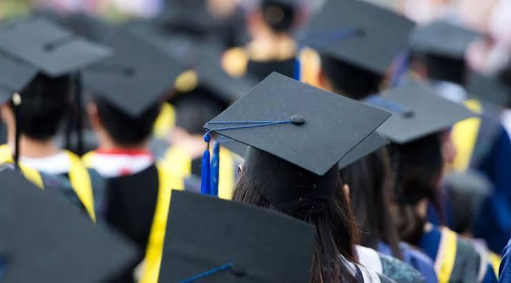 Mana Nih Yang Kalian Pilih Kuliah Atau Kerja? , Jangan Sampai Salah Pilih Loh!!