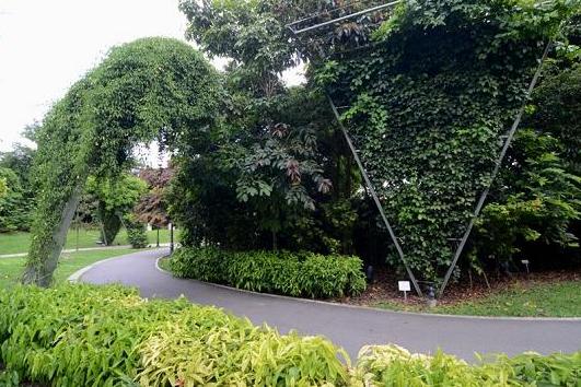6 Keindahan Singapura Botanic Gardens Buat Para Penyuka Alam