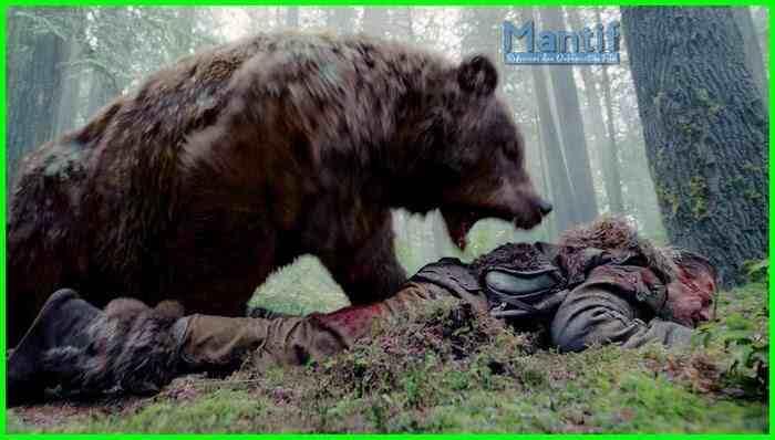 Orang Ini Masih Hidup, Meski Jadi Santapan Beruang