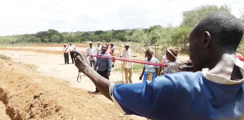 Seed Ball & Ketapel — Duet Maut untuk Reboisasi Hutan