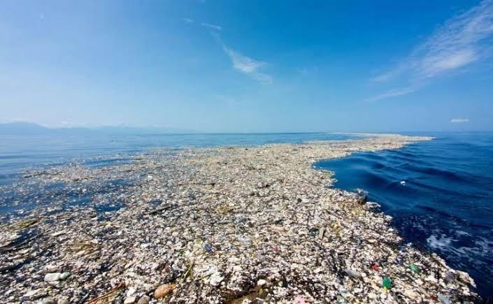 GILA!!, Ilmuwan ini Menemukan Sampah di Palung Mariana, Udah nyampe sana!😱
