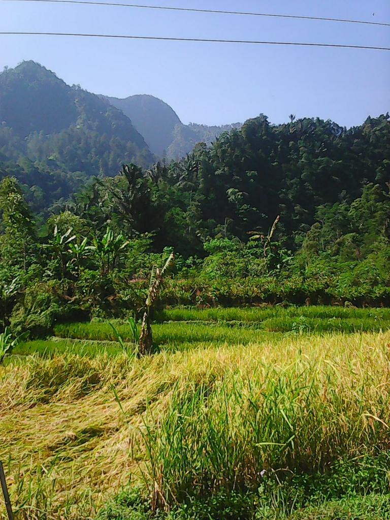 Banggaku Padamu, Indonesia Tanah Airku
