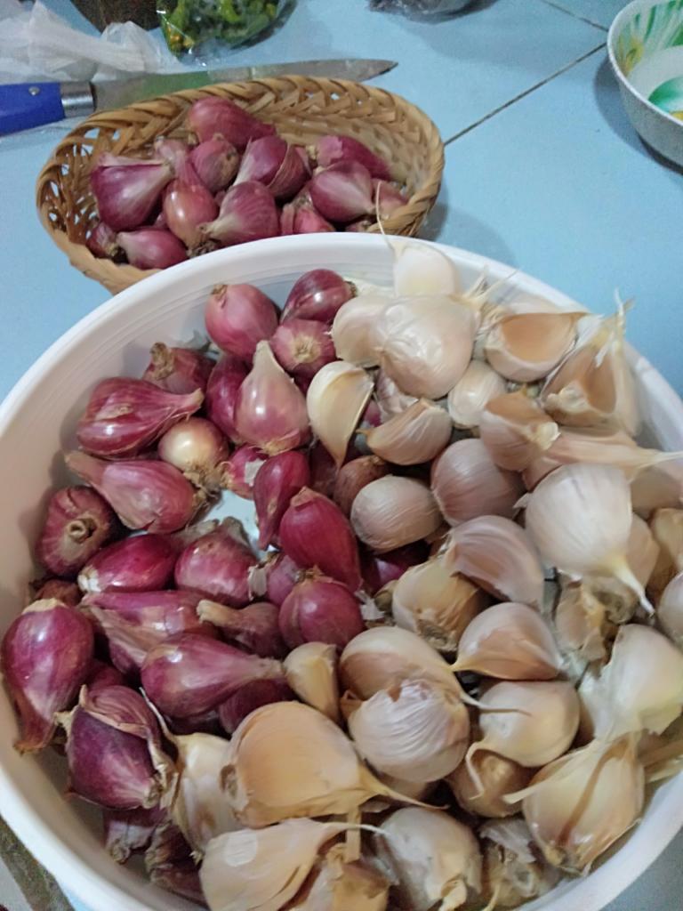 Bawang Merah Bawang Putih, Bumbu Dapur Pasangan Abadi