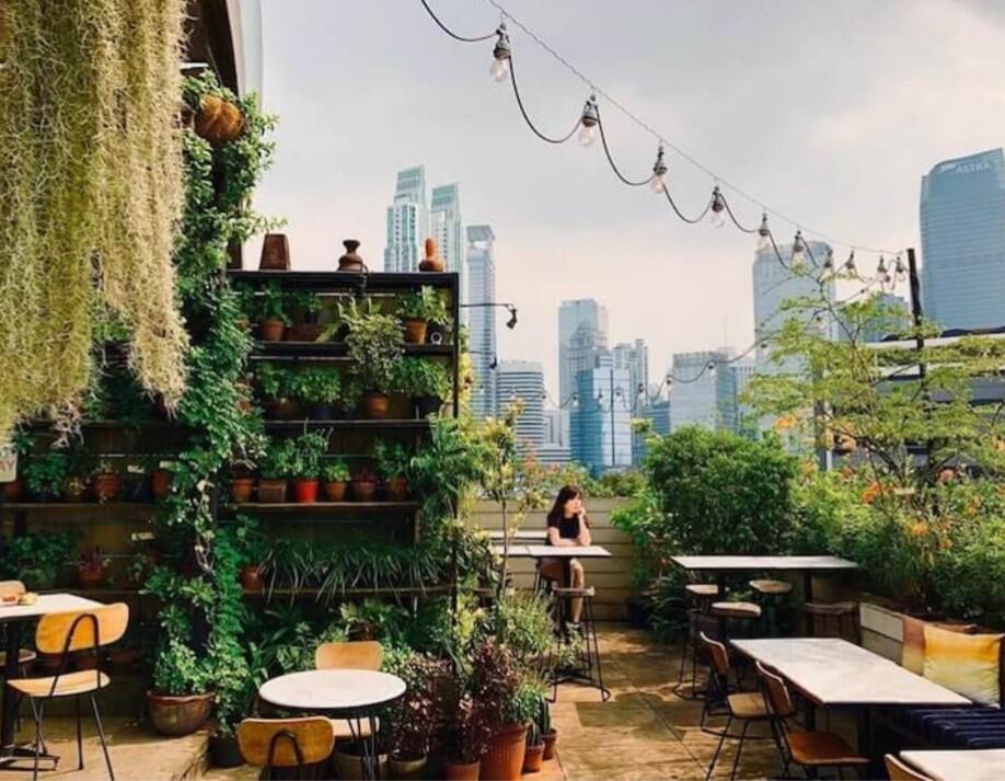 Tempat Minum Hemat dan Instagramable di Jakarta