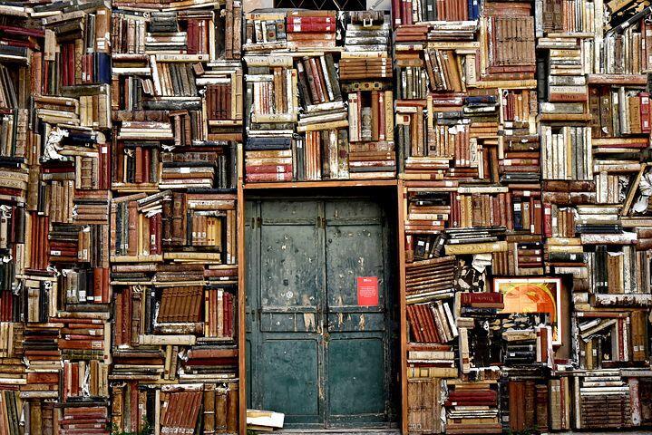 Yang Suka Buku Sudah Tahu Bibliomania Belum ?