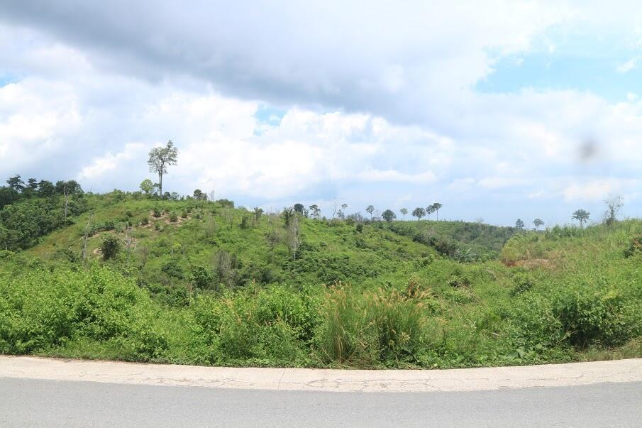Pemindahan Ibukota ke Kalimantan Bukan Lagi Sekedar Wacana. Apa Harapan Ente Gan?