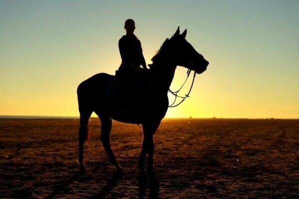 Arab Saudi Siapkan Rp284 Miliar untuk Hadiah Lomba Balap Kuda