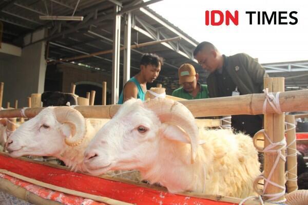 Pemkab Tangerang Anjurkan Distribusi Daging Kurban Pakai Daun Pisang