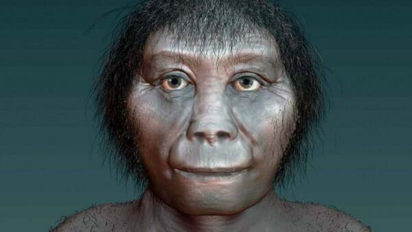 Dijuluki 'Hobbit', 7 Fakta Menarik Spesies Homo floresiensis