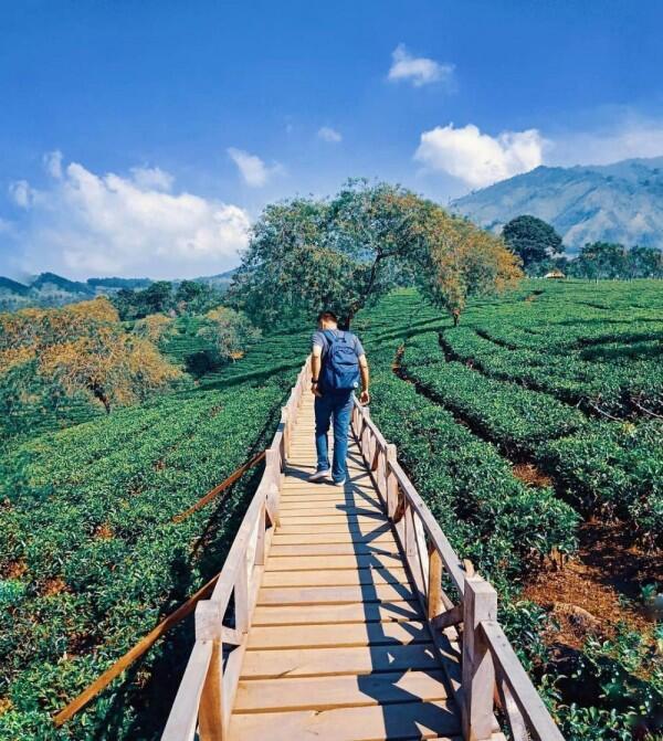 5 Tempat Wisata Seru di Malang yang Bisa Kamu Kunjungi Dalam Sehari