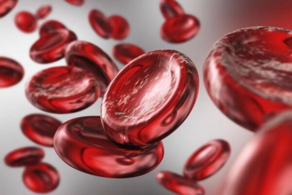 7 Cara Tingkatkan Kadar Hemoglobin dalam Darah, Jangan Sampai Pingsan