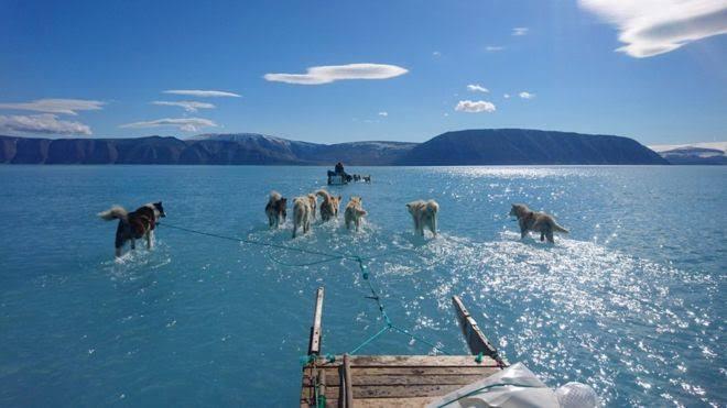 Gelombang Panas Melanda, 12,5 Miliar Ton Es di Greenland Mencair Dalam Sehari