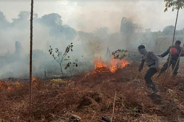 Kebakaran Hutan dan Lahan, Polda Kalbar Buru Pelaku Perorangan Hingga Korporasi
