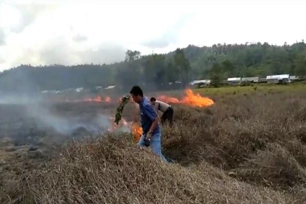 Ratusan Rumah di Konawe Nyaris Terbakar Akibat Kebakaran Lahan Gambut