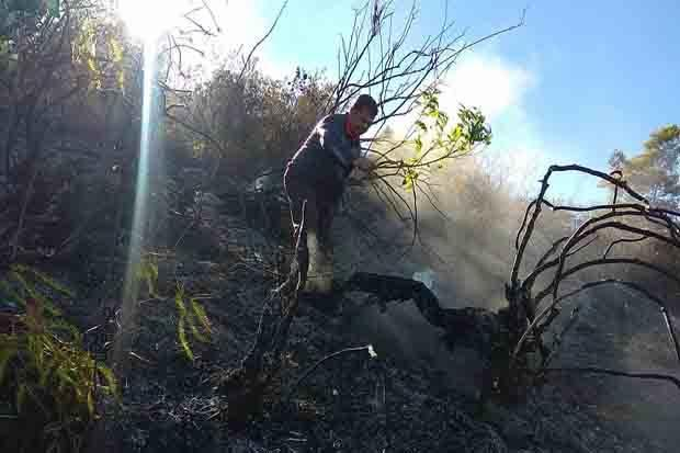 Tim Gabungan Masih Sisir Kawasan Gunung Sumbing yang Terbakar