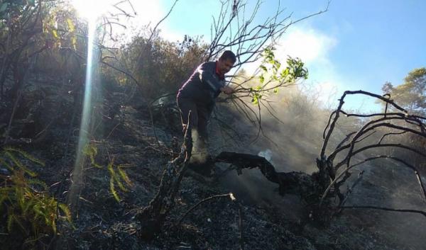 Masih Ada Titik Api, Tim Gabungan Sisir Kawasan Gunung Sumbing