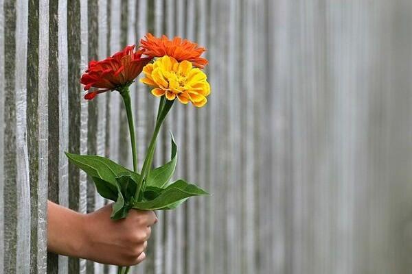 5 Sisi Baik Ketika Memilih untuk Tidak Mengutarakan Perasaan Cinta