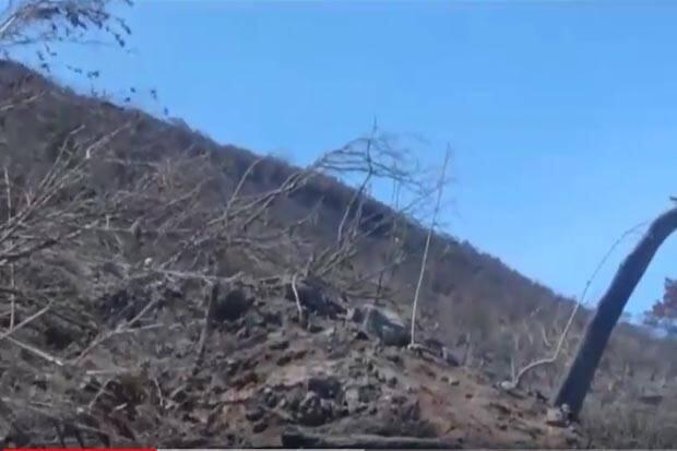 Sudah 7 Hari, Api Masih Membara di Gunung Ciremai